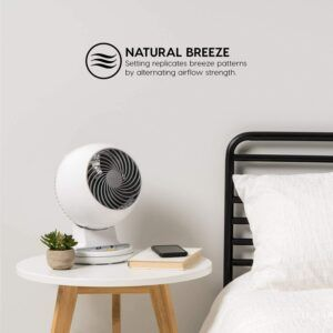 Woozoo Remote Controlled Compact Oscillating Circulating Fan