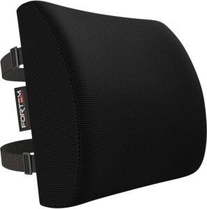 FORTEM Lumbar Support for Office Chair 办公椅腰部支撑垫子,汽车后座椅垫,记忆泡沫垫