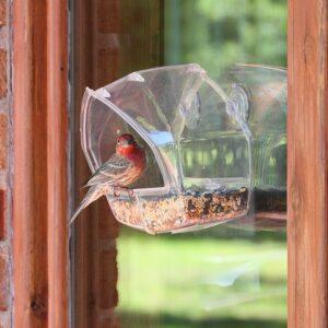 给窗外野生鸟的喂食器 Window Wild Bird Feeder