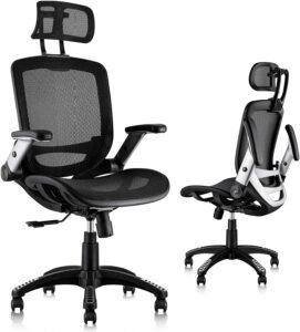 Gabrylly Ergonomic Mesh Office Chair 办公椅