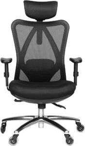 整体价值最高的网状办公椅:Duramont Ergonomic Adjustable Office Chair
