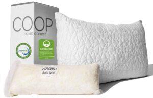 总体上最好的枕头,完全可调而且价格合理 Premium Adjustable Loft Pillow