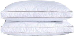 最佳羽绒枕 Puredown Natural Goose Down Feather Pillows