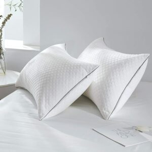 适合腹部睡眠的枕头 Pillows for Sleeping 2 Pack Adjustable Hypoallergenic Velvet Hotel Pillows