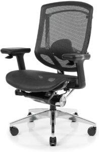 电竞椅NeueChair Silver Ergonomic Office Computer Chair