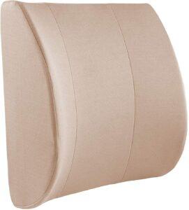 最适合办公 DMI Lumbar Support Pillow