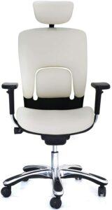 白色外观人体工学椅 GM Seating Ergolux Genuine Leather Executive Hi Swivel Chair