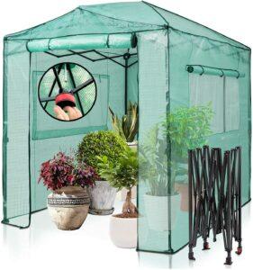 室外花园温室顶篷